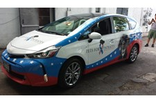 Pets For Patriots Prius Wrap