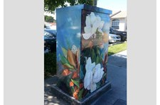 - Image360-Ft. Lauderdale - Utility Box Wraps - Flowers