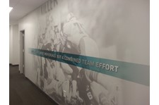 Wall wrap & dimentional letters for the Miami Dolphins