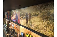 Environmental Wall Graphics for Scheels in Overland Park, Kansas
