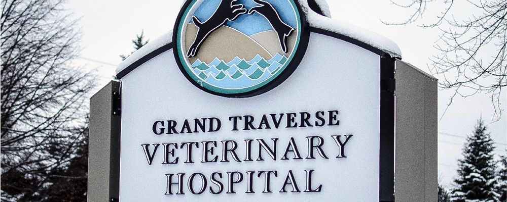 Image360-Traverse-City-MI-Monument-Veterinary-Hospital