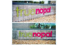 Wall sign for True Nopal in Scottsdale AZ