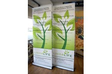 Retractable Banner for finance rochester ny