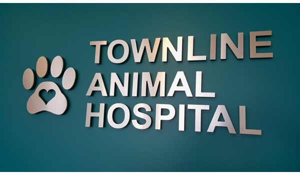 Logo wall with metal laminate letters on wall behind reception area at Townline Animal Hospital in Vernon Hills IL